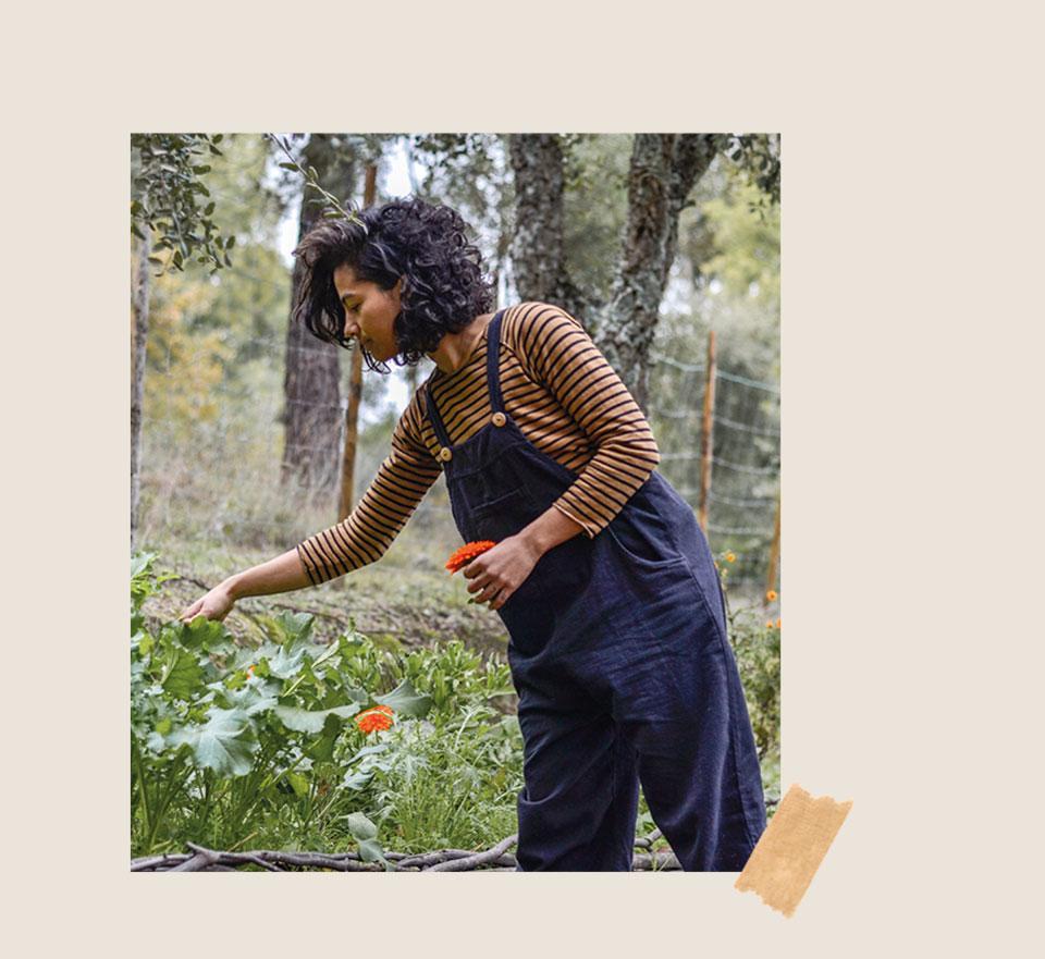 Catarina Seixas - The Olive tree + the moon