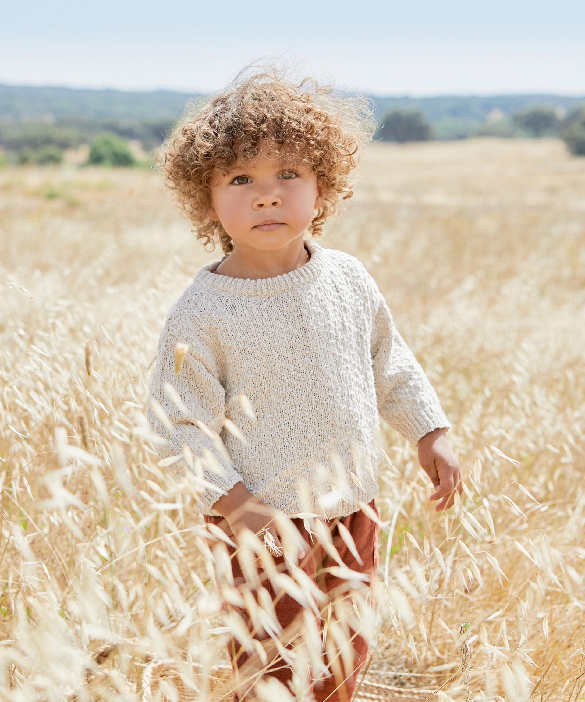 Camisola de malha tricotada | Botany